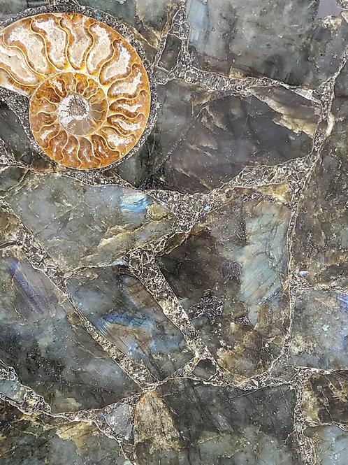 Labradorite w/ Amonties Precious Stone 2CM