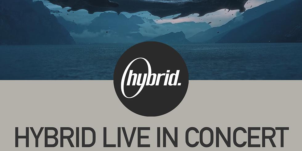 Hybrid LiveStream - Under The Bridge