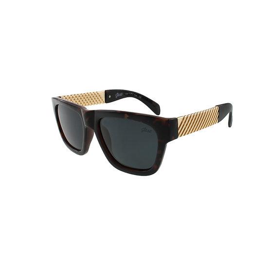 Jase New York Royce Sunglasses in Havana