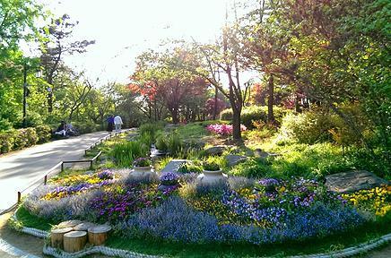 Namsan park Seoul