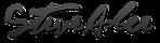 SA-Logo_edited.png