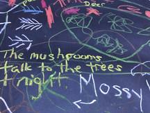 Mushrooms Talk at Night.jpg