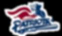 patriots-logo.png