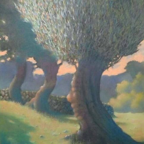 Olive Trees in Deia