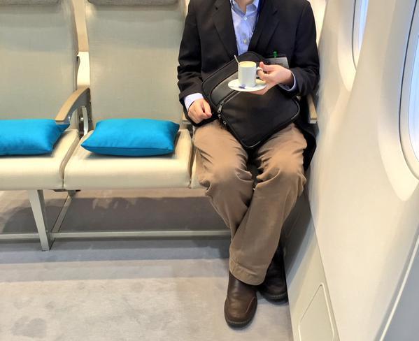 airline seat.jpg