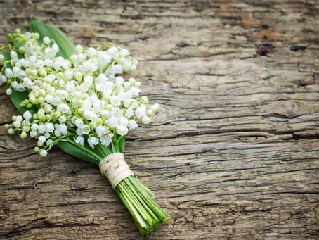 Duminica Floriilor – The Palm Sunday