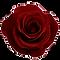 d4oxakn-2f51431c-7c71-4963-a217-c2a9517c