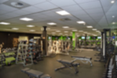 Swansea Gym