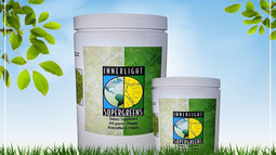 SUPERGREENS – THE WORLD'S FIRST ORGANIC VEGETABLE, FRUIT AND GRASS POWDER!