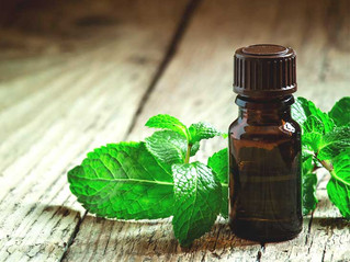 The Incredible Health Benefits of Peppermint Essential Oil