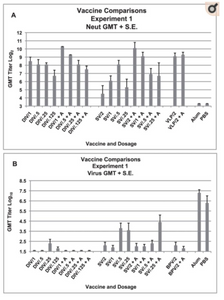 Vaccine ComSerum neutralizing (neut) antibody and lung virus titers for each vaccine dosage group. A. Geometric mean serum antibody titer as log2 and standard error of the mean (S.E.) on day 56 for each vaccine dosage group. Seven to eight mice per group. Vaccines: double inactivated whole virus (DIV), recombinant S protein (SV), viral-like particle vaccine (VLP), with alum (+A). Five mice per group were given 0.1 ml of vaccine intramuscularly on days 0 and 28. B. Geometric mean virus titer (log10 TCID50/g) and standard error of the mean (S.E.) in lungs on day 58 (two days after SARS-CoV challenge) for each vaccine dosage group. Analyses: A. GMT with compared to without alum: DIV p>.05, VLP p>.05, SV p = .001. GMT for different vaccine dosage: DIV with alum p = .007, DIV without alum p>.05, SV with alum p = .028, SV without alum p = .01. Multiple regression: GMT increased for alum p = .012 and dosage p<.001, for SV alum only p = .001. B. GMT for all DIV groups not different p>.05, GMT for SV group without alum p .008 and with alum p .023. GMT for VLP group is not different p>.05.