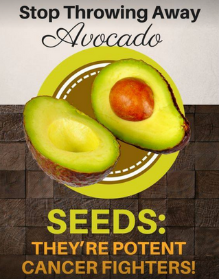INGESTING IJUICE AVOCADO SEED OIL CAN HELP FIGHT CANCER!