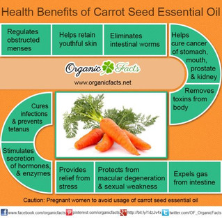 13 Health Benefits of Carrot Seed Oil