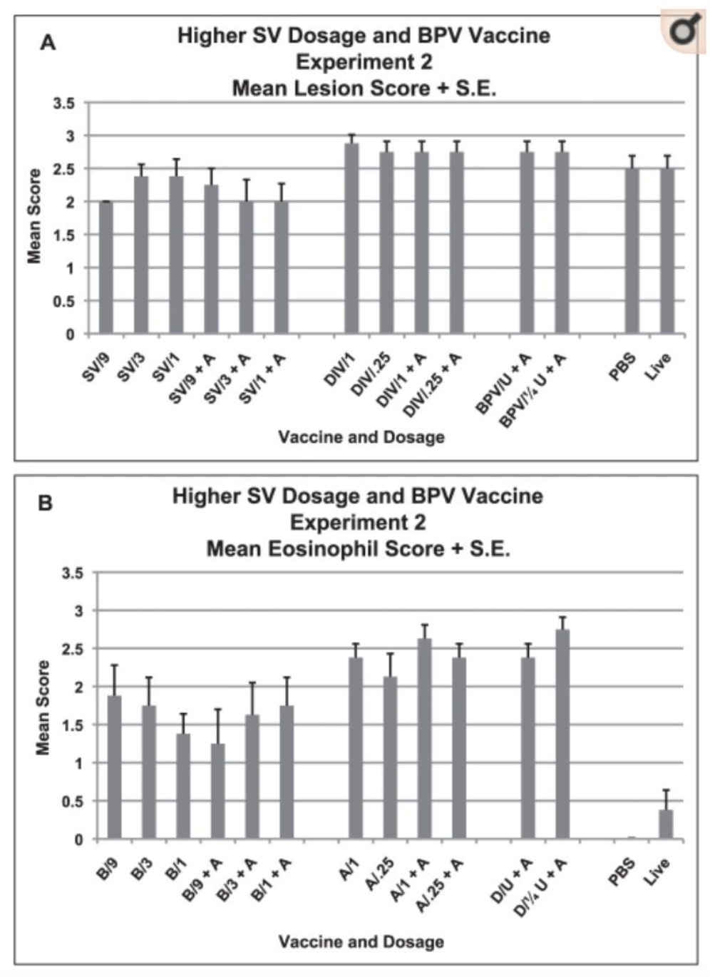 Higher Dosages of SV Vaccine plus DIV and Mean lung cellular infiltration/lesion pathology and mean percent eosinophils in infiltrates for each vaccine dosage group two days after challenge with SARS-CoV. A. Mean lesion score and standard error of the mean (S.E.) for each vaccine dosage group. Scores are mean of scores for seven to eight mice per group. Scoring - 0 - no definite pathology, 1 - mild peribronchiole and perivascular cellular infiltration, 2 - moderate peribronchiole and perivascular cellular infiltration, 3 - severe peribronchiolar and perivascular cellular infiltration with thickening of alveolar walls, alveolar infiltration and bronchiole epithelial cell necrosis and debris in the lumen. Ten to 20 microscopy fields were scored for each mouse lung. B. Mean score and standard error of the mean (S.E.) for eosinophils as percent of infiltrating cells for each vaccine dosage group. Scores are mean of scores for seven to eight mice per group. Scoring: 0 - <5% of cells, 1 - 5–10% of cells, 2 - 10–20% of cells, 3 - >20% of cells. Ten to 20 microscopy fields were scored for each mouse lung. Analyses: A. Mean lesion scores were different p<.001. Mean scores were lower for SV than DIV p<.001 and less than BPV p = .006. B. Mean eosinophil scores were lower for SV than DIV p<.001 and less than BPV p<.001. Eosinophil scores greater for SV than PBS or live virus p<.001.
