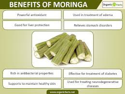 Health and Nutritional Benefits of Moringa Essential Oil