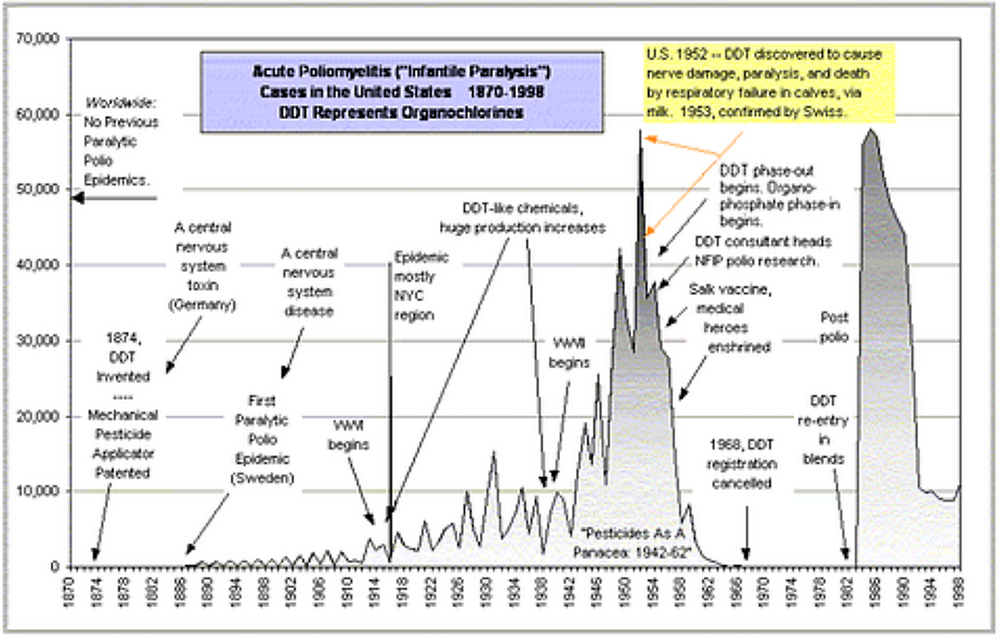 "The graph above  shows polio in the United States in a context rarely (if ever) portrayed since Biskind, the environmental context. ""DDT"" and ""DDT-like chemicals"" are selected for this graph as the least complex way to represent the a broad overview of the evolution of the technology of, and potential for, mass acidic  poisoning."
