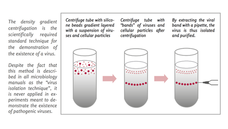 centrifuged fragments of dead cells at the bottom of a test tube and then, without describing their biochemical structure, they misinterpreted the cellular debris and invented a new term calling cellular debris viruses.