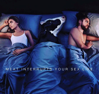 Is Meat Interrupting Your Sex Life?