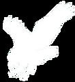 Riverhawk Logo s.png