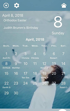 Screenshot of Daybook App, a white-text calendar page over a blue-toned photo of a person looking up at seagulls flying around them