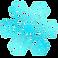 Myasthenia Symptom Tracker Logo, an ice blue snowflake