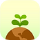 Flora Logo, a small gree plant in brown mound of dirt all on a yellow square with rounded corners
