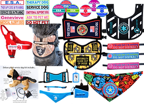 """A set of 2 rows of embrodered personalized rectangular patches in many different color combinations, a red service dog leash-syle harness, a bedazzled and patterned service dog vest on a small gray dog, 6 various multi-color service, medic-alert, and esa dog patches, a black and white striped service dog vest with teal accents, a harry potter themed service dog vest with themed patches, 3 leash attachments in different colors embroidered with vaious service dog warnings, a mavel heroes bandana with patch that reads, """"I make people feel better,what's your super power?"""", a stuffed service dog wih accessories, a disabled veteran service dog vest and a kit with various service dog accessories."""