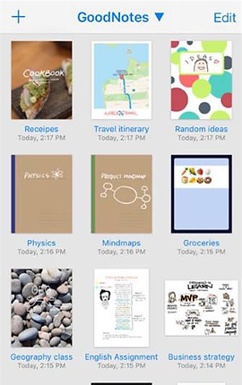"Screenshot of Good Notes App, a white screen with 9 thumbnails of files that can be opened.  They are labeled, ""Receipes [sic], Travel Itinerary, Random Ideas, Physics, Mindmaps, Groceries, Geography Class, English Assignment,"" and ""Business Strategy."