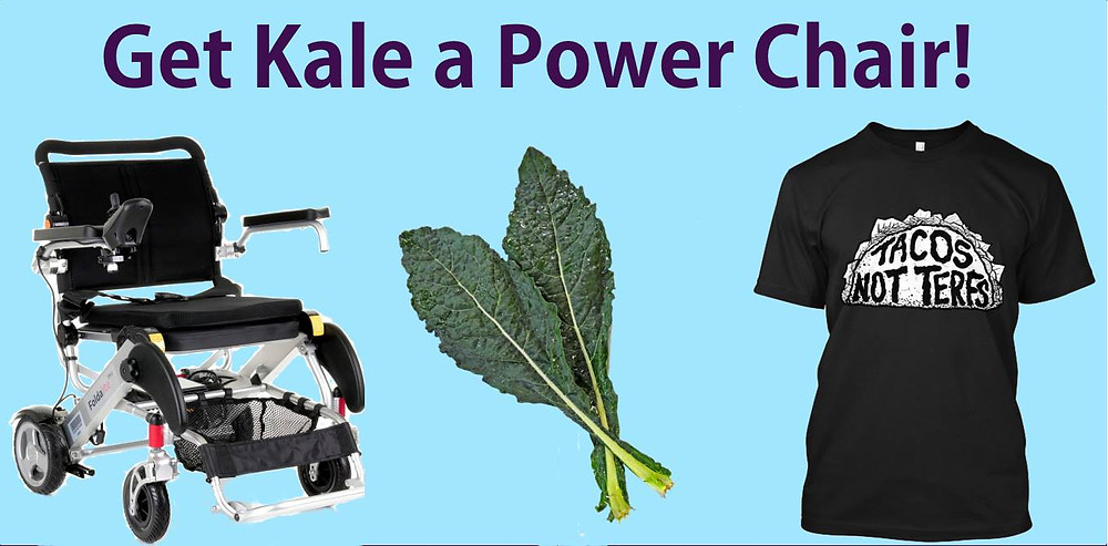 "A power wheelchair, two pieces of kale and a black tee shirt that reads, ""Tacos not Terfs"" all on a light blue background titled, ""Get Kale a Power Chair!"""