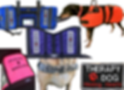 """3 different service dog vests in pink, blue, and purple.  2 have """"service dog"""" patches, one reads """"please donate"""".  A large blackdog wears an vibrant orange coat for winter, a tan dog wears a camo strap across its chest that reads """"Service Dog"""", and there is a black patch with white and red embrodery reading """"Therapy Dog Healing Hearts."""""""