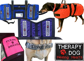 "3 different service dog vests in pink, blue, and purple.  2 have ""service dog"" patches, one reads ""please donate"".  A large blackdog wears an vibrant orange coat for winter, a tan dog wears a camo strap across its chest that reads ""Service Dog"", and there is a black patch with white and red embrodery reading ""Therapy Dog Healing Hearts."""