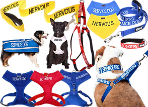 "Leashes, vests, coats and bandanas of varying colors.  Each is marked with either ""service dog"" ""do not pet"" ""nervous"" ""deaf door other related warnings."""