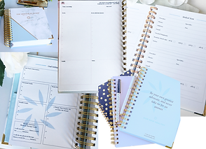 3 Planners specifically for Spoonies, featuring medical-specifc tracking and journaling