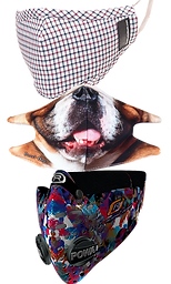 3 respriatory masks.  The top in a plaid pattern, the middle with a close up of a dogs nose and mouth, and the bottom a filtered mask in an abstract colorful pattern.