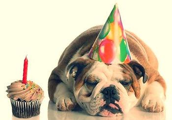 הפעלה ליום הולדת שלך