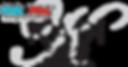 kapi_logo.png