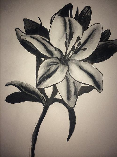 Blooming Print