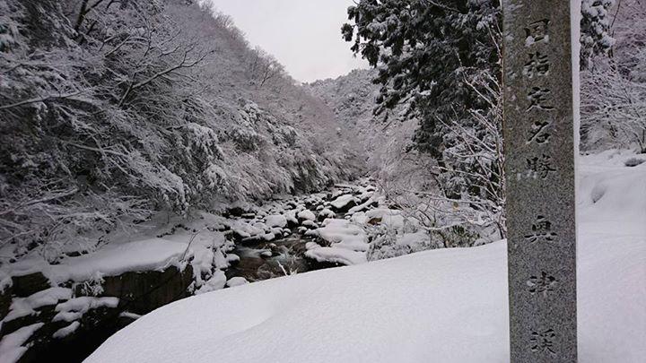 雪の奥津渓