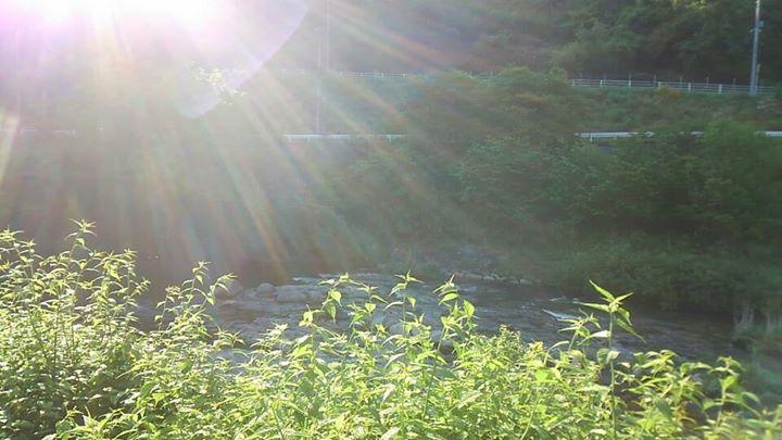 早春の奥津川