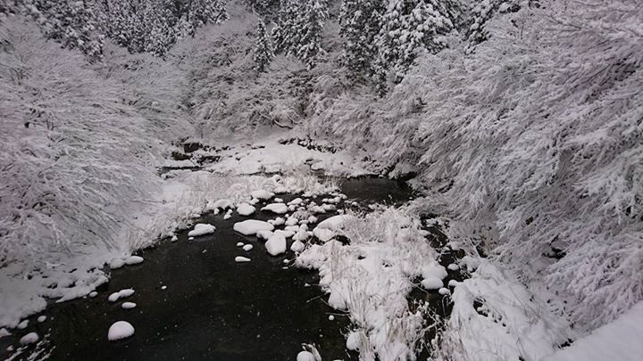 冬の奥津渓