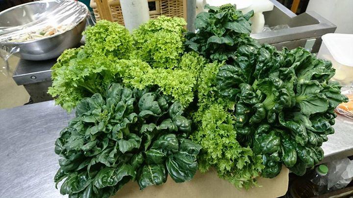 無農薬新鮮野菜
