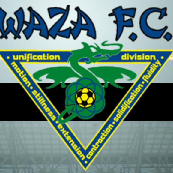 WAZA FC, Michigan