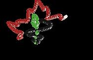 CFMS-logo-transparent-1024x666.png