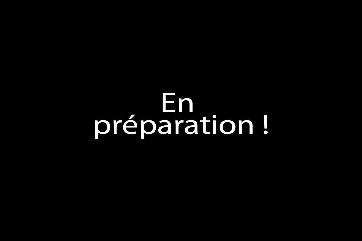 En_préparation.jpg