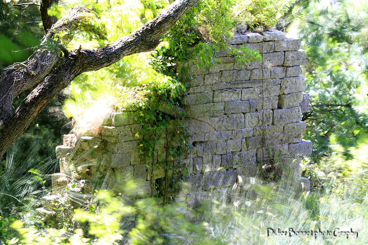 Mur à Sainte Philomène.