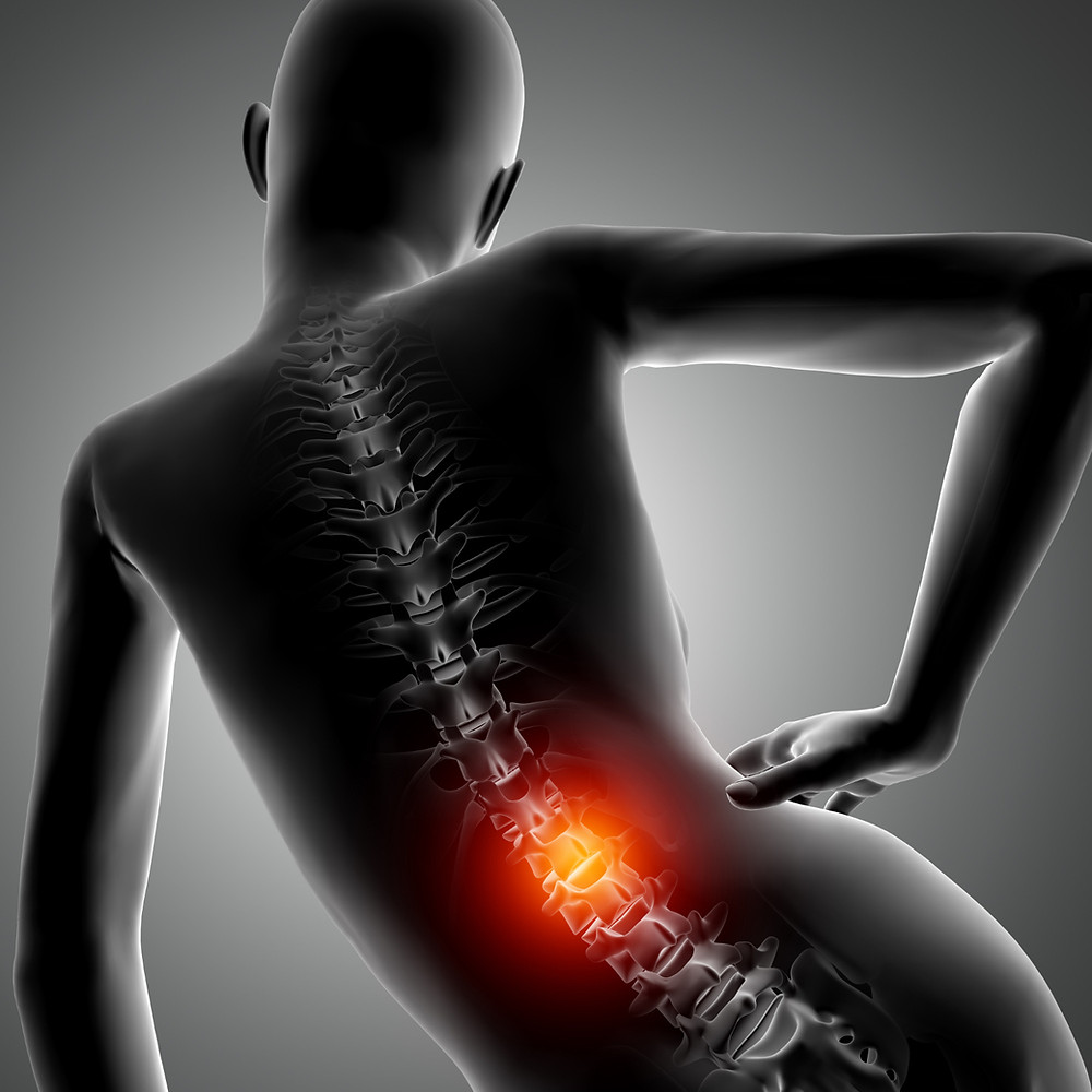 Book Physio Online