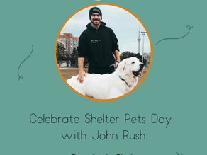 Celebrate Shelter Pets Day with John Rush