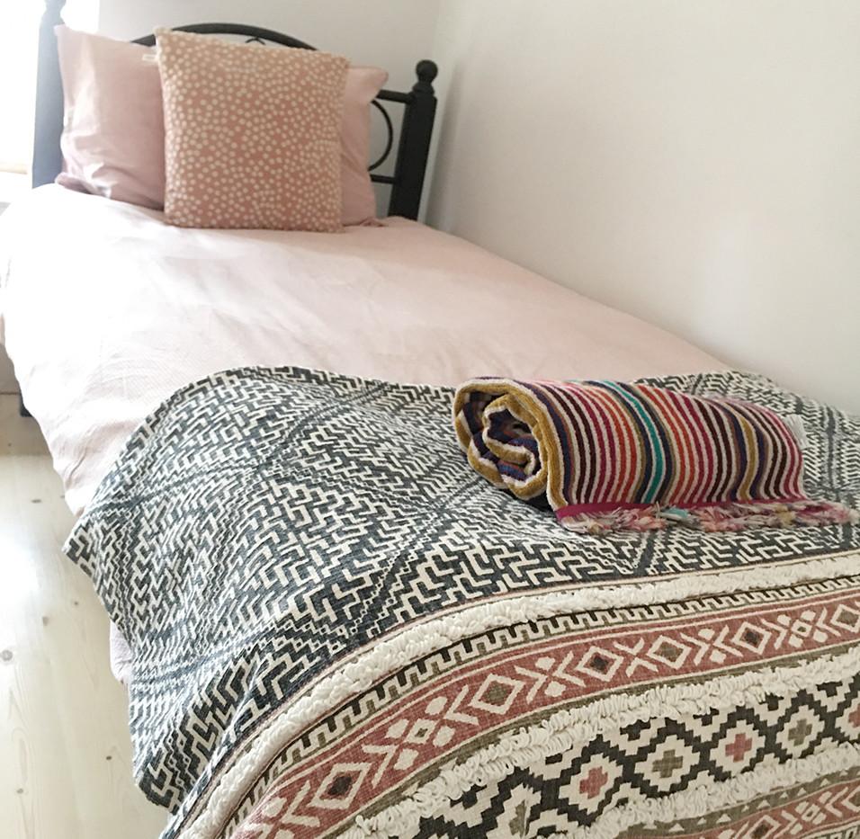 Single Room Downstairs (Room 1)