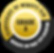 badge-golden-xs.png