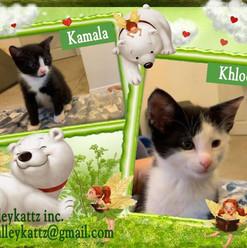 Kamala & Khloe